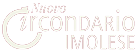 Logo del Nuovo Circondario Imolese